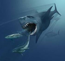 Megalodon, who lived in the Oligocene and Neogene - the main pretender for being tyamingila